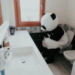 10 Weird and wonderful toilets around the world